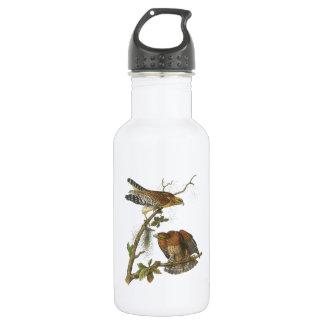 faucon Rouge-épaulé par Audubon