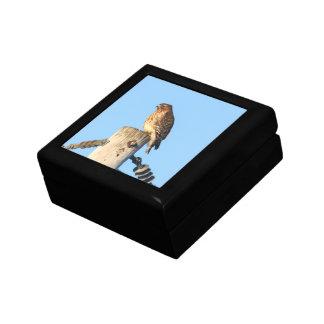 faucon Rouge-épaulé Petite Boîte À Bijoux Carrée