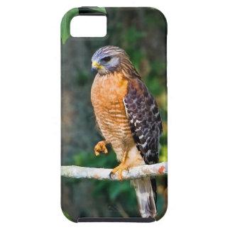 Faucon Rouge-Épaulé sur un cas de l'iPhone 5 de me