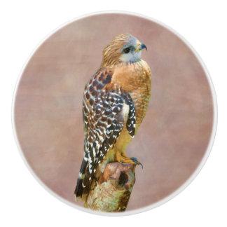 Faucon Rouge-Épaulé sur un membre