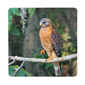 Faucon Rouge-Épaulé sur un membre Dessous De Verre Puzzle