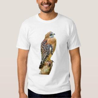 Faucon Rouge-Épaulé T-shirts