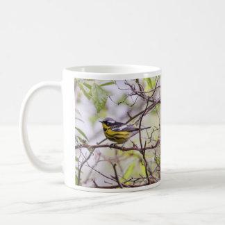 Fauvette de magnolia mug