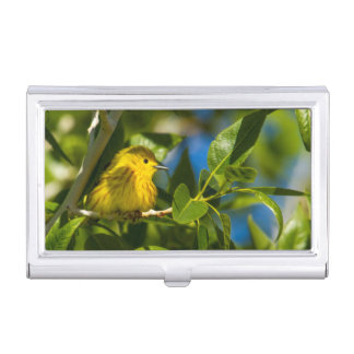 Fauvette jaune dans l'arbre près d'Augusta, Étui Pour Cartes De Visite