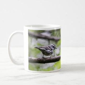 Fauvette noire et blanche mug