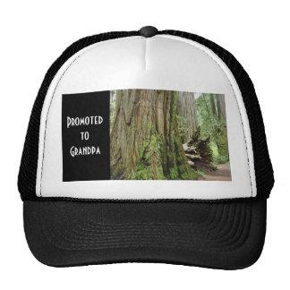 Favorisé au grand-papa folâtre des casquettes de b