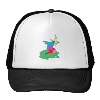 Fée fairy grenouille frog casquettes