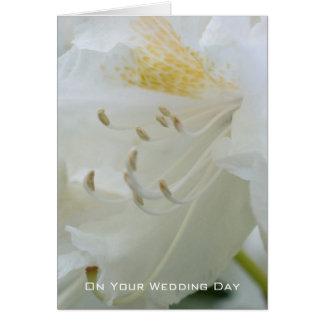 Félicitation l'épousant blanche du rhododendron | cartes
