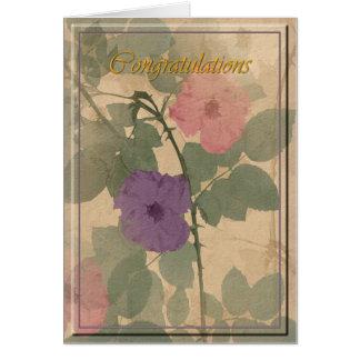 Félicitations roses poussiéreuses cartes de vœux