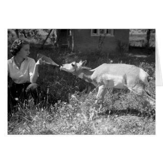 Femme allaitant une antilope carte de vœux