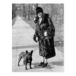 Femme avec le bouledogue français, les années 1920 carte postale