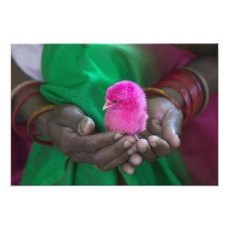Femme jugeant un petit poussin peint avec saint photographe