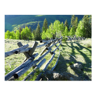 Fenceline en bois carte postale