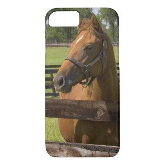 Ferme de cheval de pur sang dans le comté de coque iPhone 7