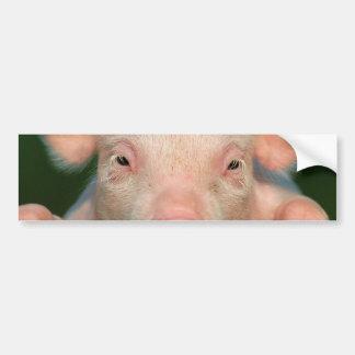 Ferme de porc - visage de porc autocollant de voiture