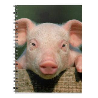Ferme de porc - visage de porc carnet à spirale