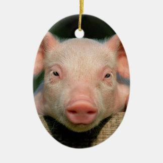 Ferme de porc - visage de porc ornement ovale en céramique