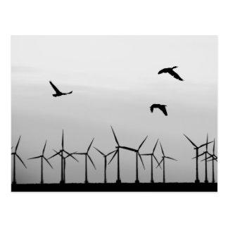 Ferme et oiseaux de vent carte postale