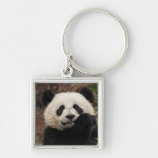 Fermez-vous de la consommation de panda porte-clé carré argenté