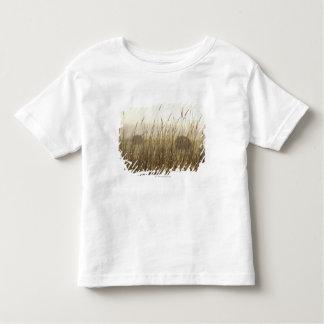 Fermez-vous de la photographie de blé t-shirt pour les tous petits
