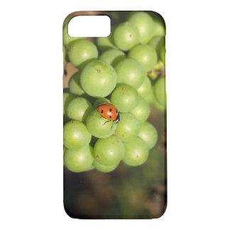 Fermez-vous de l'insecte de dame sur les raisins coque iPhone 7