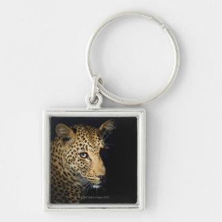 Fermez-vous du léopard, un plus grand ressortissan porte-clés