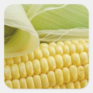 Fermez-vous du maïs sticker carré