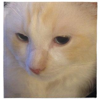 Fermez-vous vers le haut du chat rouge de Ragdoll Serviettes En Tissus
