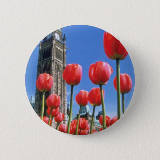 Festival canadien blanc de tulipe, tour de paix pin's