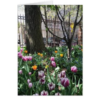 Festival NYC de tulipe de jardin de la Communauté Carte De Vœux