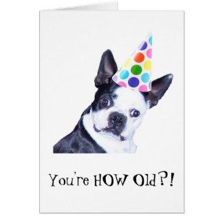 Fête d anniversaire de Boston Terrier - carte