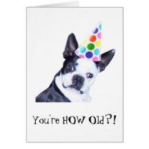 Fête d'anniversaire de Boston Terrier - carte