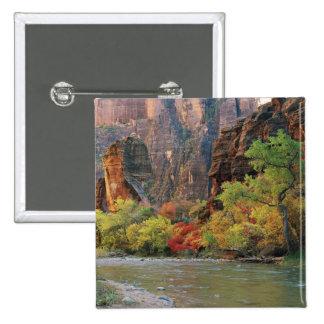 Feuillage d'automne le long de rivière de Vierge p Badge