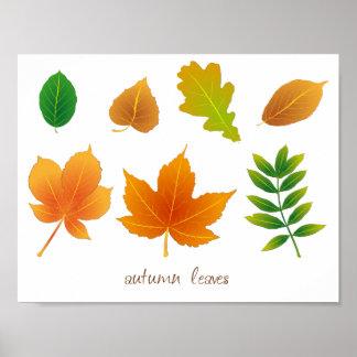 Feuillage d'automne poster