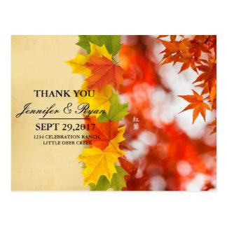 Feuillage/mariage de automne d'automne carte postale