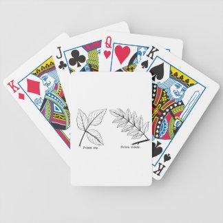 Feuille botanique vintage jeu de cartes