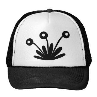 feuille casquettes