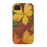 Feuille d'automne coques Case-Mate iPhone 4