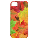 FEUILLE D'AUTOMNE COQUES Case-Mate iPhone 5