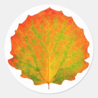 Feuille d'automne d'Aspen Sticker Rond