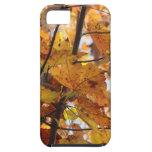 Feuille d'automne étui iPhone 5