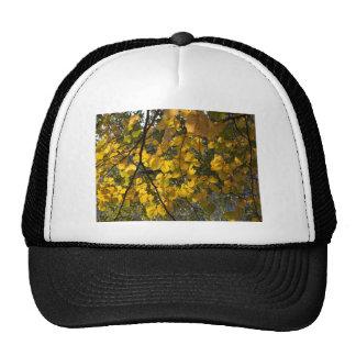 Feuille d'automne jaune et vert casquette de camionneur