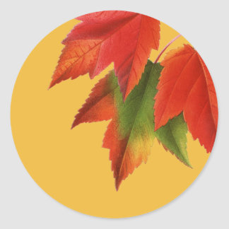 Feuille d'automne lumineux sticker rond