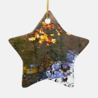 Feuille d'automne sur l'étang ornement étoile en céramique