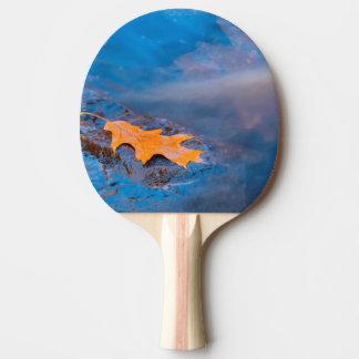 Feuille de chêne sur la roche en rivière de raquette de ping pong