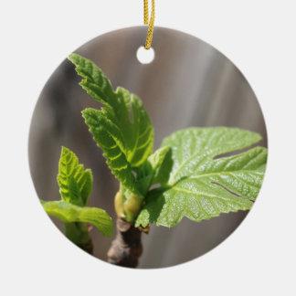 Feuille de figue fraîche ornement rond en céramique