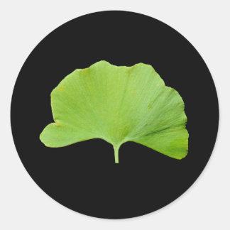 Feuille de Ginkgo (ginkgo biloba) Sticker Rond