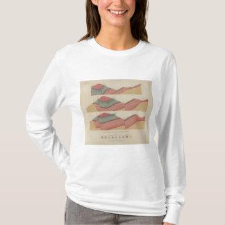 Feuille de secteur d'extraction de parc de t-shirt