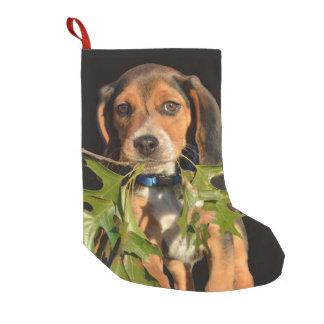 Feuille de transport de chiot adorable de beagle petite chaussette de noël