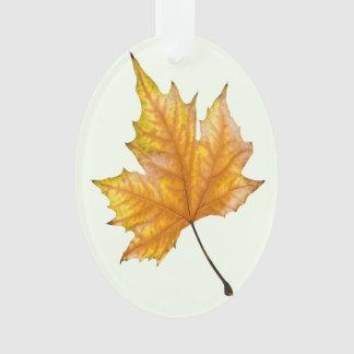 Feuille d'érable d'automne